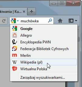 pole wyszukiwania